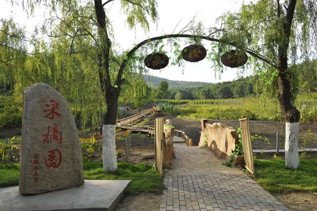 青山旅游区景点分布情况-双鸭山市岭东区人民政府